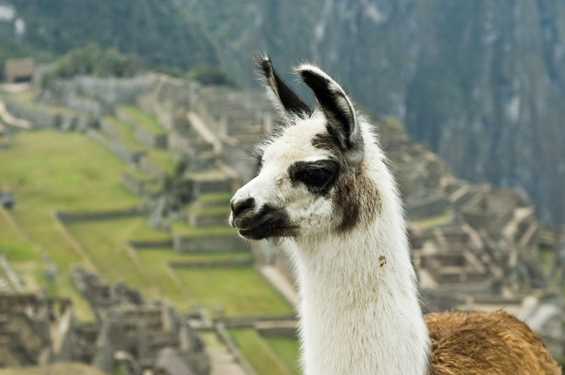 The mystery of the Inca Empire